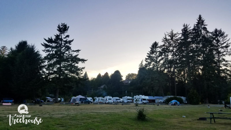 lots of RVs camping