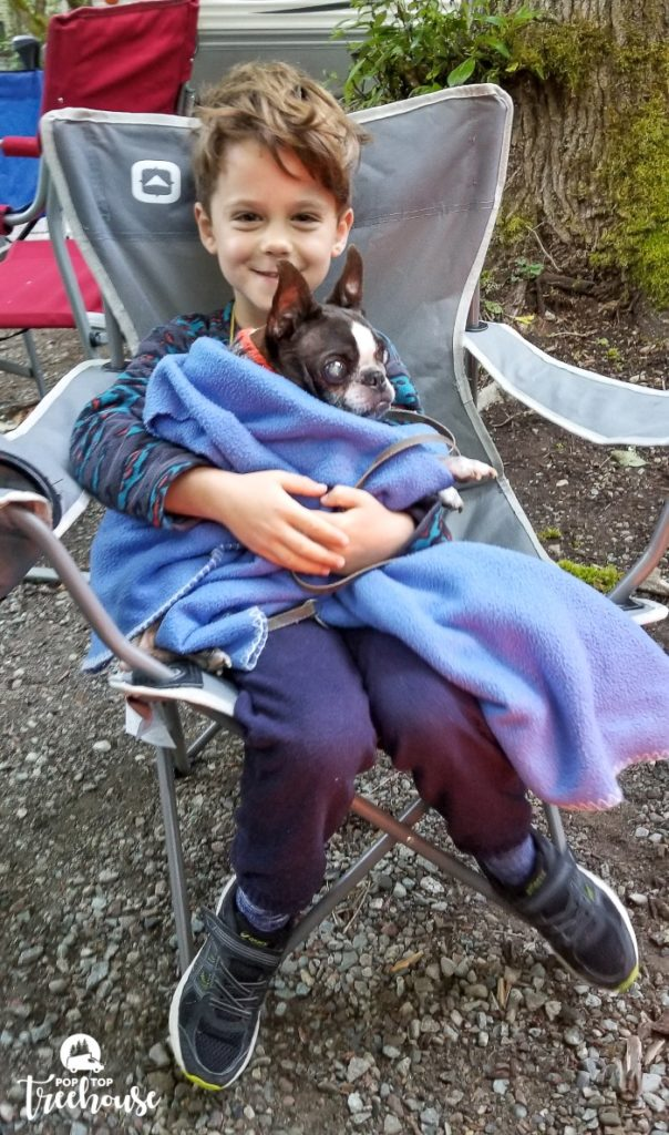 Camping Chair and Dog