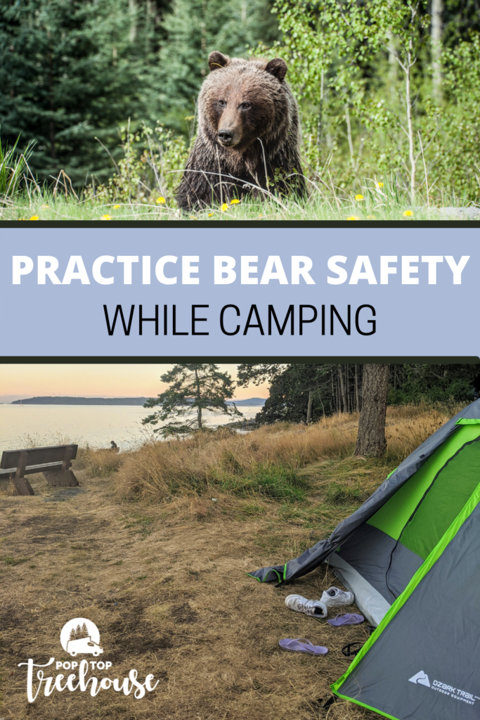 How to Practice Bear Safety While Camping pin