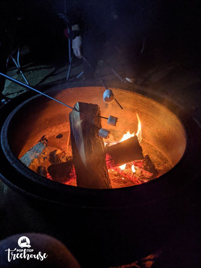 roasting marshmallows over campfire