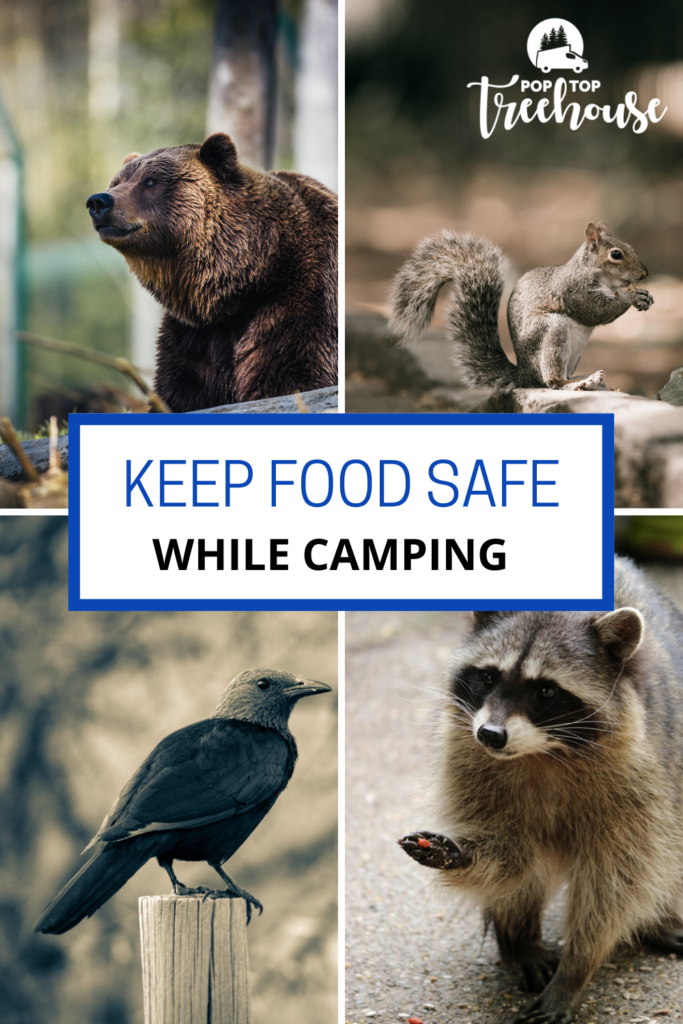 Camping Tip to Keep Food Safe from Animals