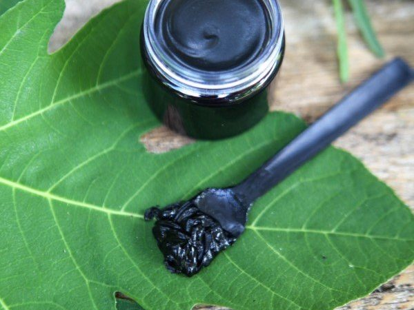 charcoal drawing salve for camping