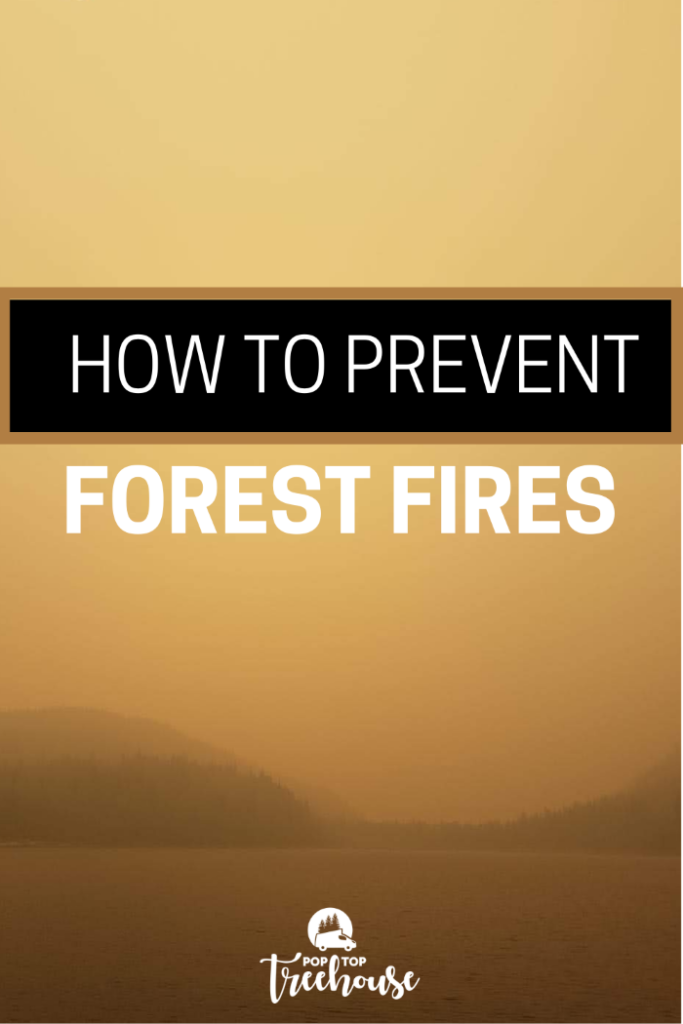 How to Prevent Forest Fires