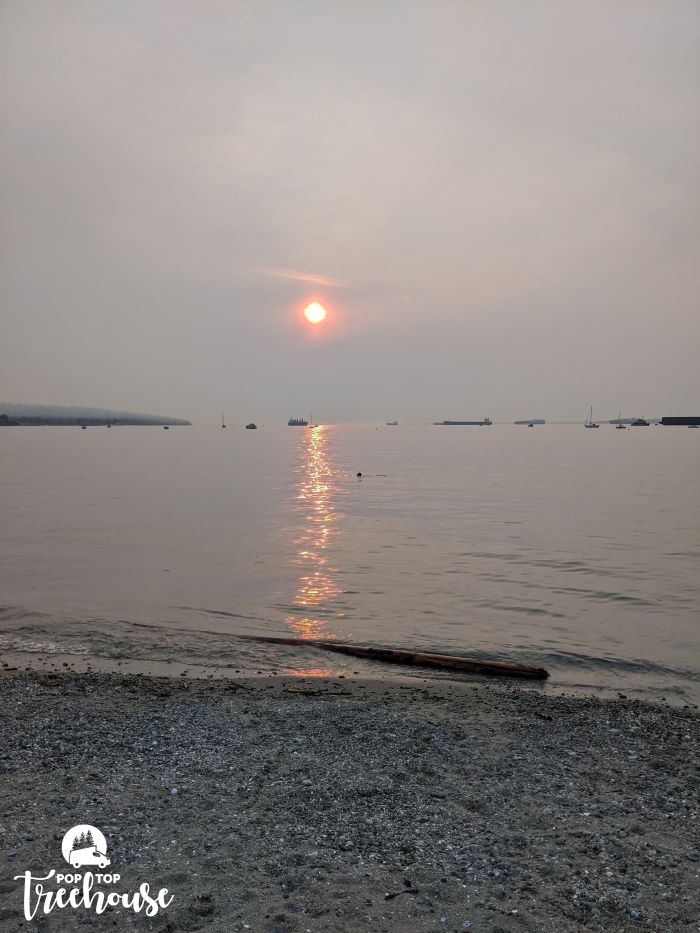 red sun from forest fire smoke