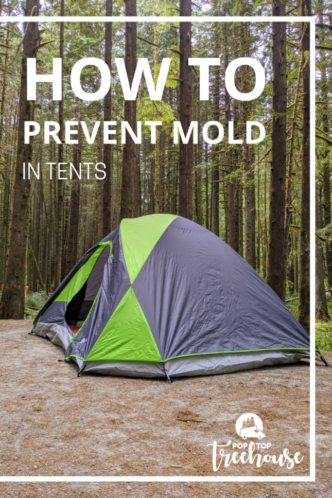 How to Prevent Mold in Tents
